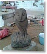 Sheffield Owl Metal Print by Stephen Nicholson