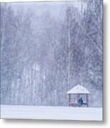 Shelter In The Storm - Featured 3 Metal Print by Alexander Senin