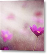 Shine On Me Metal Print by Amy Tyler