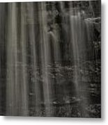 Shower Curtain Drapes Bear Roar Metal Print by Mark Serfass