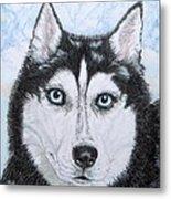Siberian Husky Metal Print by Yvonne Johnstone