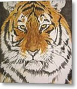 Siberian Tiger Metal Print by Regan J Smith