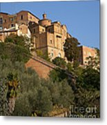 Sienna Metal Print by Robert Talbot