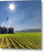 Silos Metal Print by Debra and Dave Vanderlaan