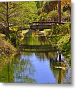 Silver Springs Florida Metal Print by Christine Till