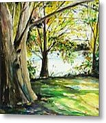 Singeltary Shade Metal Print by Scott Nelson