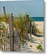 Singer At The Shore Metal Print by Michelle Wiarda