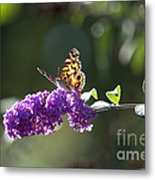 Sipping On Syrup Metal Print by Affini Woodley