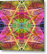 Sixth Sense Ap130511-22-20130616 Long Metal Print by Wingsdomain Art and Photography
