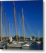 Skipjacks  Metal Print by Sally Weigand