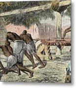 Slaves Irrigating By Water-wheel Metal Print by English School