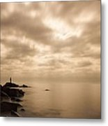 Small... Metal Print by Mary Amerman