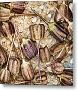 Snakes Head Fritillary Flower Seeds Pattern Metal Print by Tim Gainey