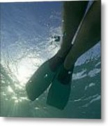 Snorkeller Legs With Flippers Underwater Metal Print by Sami Sarkis