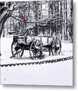 Snow Bound Metal Print by Mary Timman
