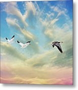 Snow Geese Over New Melle Metal Print by Bill Tiepelman