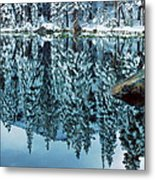 Snow Mirror Metal Print by Eric Glaser