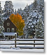 Snowed In At The Ranch Metal Print by Mitch Shindelbower