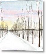 Snowy Lane Metal Print by Arlene Crafton