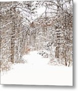 Snowy Path Metal Print by Mary Timman