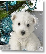 Snowy White Puppy Present Metal Print by Greg Cuddiford
