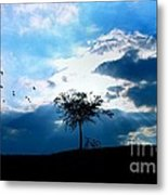 Soar Metal Print by Chrystyne Novack