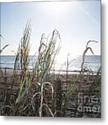 Soft Breezes  Metal Print by Angelia Hodges Clay