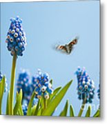 Something In The Air Metal Print by John Edwards