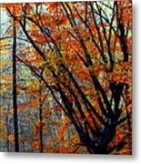 Song Of Autumn Metal Print by Karen Wiles