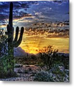 Sonoran Sunrise  Metal Print by Saija  Lehtonen
