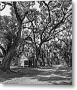 Southern Lane Monochrome Metal Print by Steve Harrington