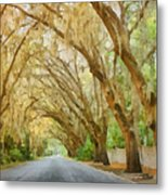 Spanish Moss - Symbol Of The South Metal Print by Christine Till