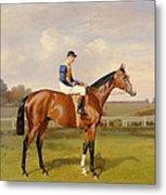Spearmint Winner Of The 1906 Derby Metal Print by Emil Adam