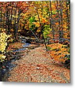 Spectrum Of Color Metal Print by Frozen in Time Fine Art Photography