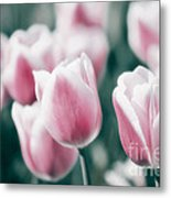 Spring In Love Metal Print by Angela Doelling AD DESIGN Photo and PhotoArt