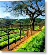 Spring In The Vineyard Metal Print by Elaine Plesser