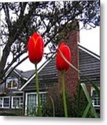 Spring On The Oregon Coast Metal Print by Will Borden