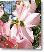 Spring Pink Dogwood Floral Art Prints Flowers Metal Print by Baslee Troutman