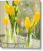 Spring Tulips Metal Print by Amanda And Christopher Elwell