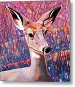 Springtime Colors Metal Print by Bob Coonts
