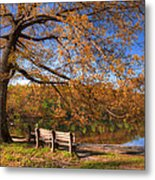 Springtime Fire Metal Print by Debra and Dave Vanderlaan