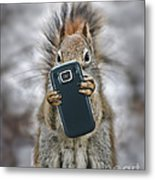 Squirrel With Cellphone Metal Print by Mike Agliolo