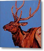 Stag Metal Print by Patricia A Griffin