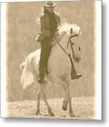 Stallion Strides Metal Print by Patricia Keller
