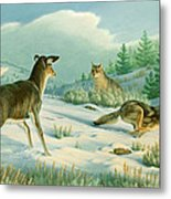 Stand-off  -whitetail Doe And Coyotes Metal Print by Paul Krapf