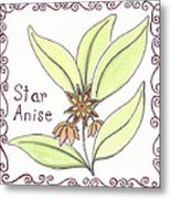 Star Anise Metal Print by Christy Beckwith