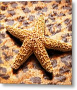 Starfish Enterprise Metal Print by Andee Design