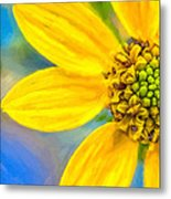 Stone Mountain Yellow Daisy Details - North Georgia Flowers Metal Print by Mark E Tisdale