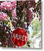 Stop To Smell The Flowers Metal Print by Frederico Borges