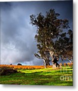 Storm Onto A Vineyard Metal Print by Boon Mee